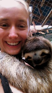 Sloths are cute.